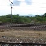 Train halt on the way